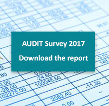 Audit Survey 2017 Report